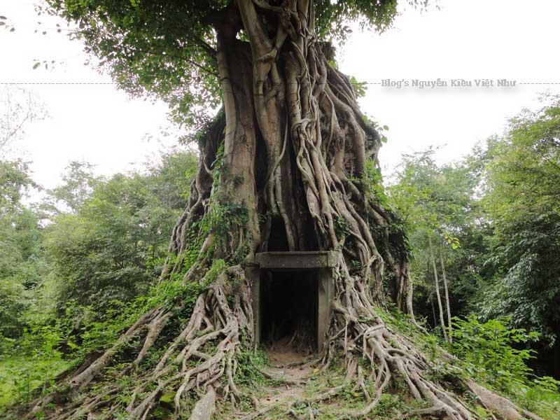 Quần thể đền Sambor Prei Kuk đang thu hút ngày càng nhiều khách du lịch trong và ngoài nước đến tham quan.