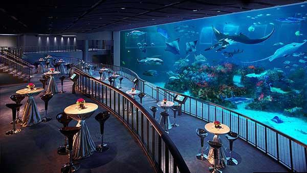 Thủy cung SEA Aquarium nằm trên đảo Sentosa, vì thế để đến đây bạn cần di chuyển tới đảo Sentosa trước.