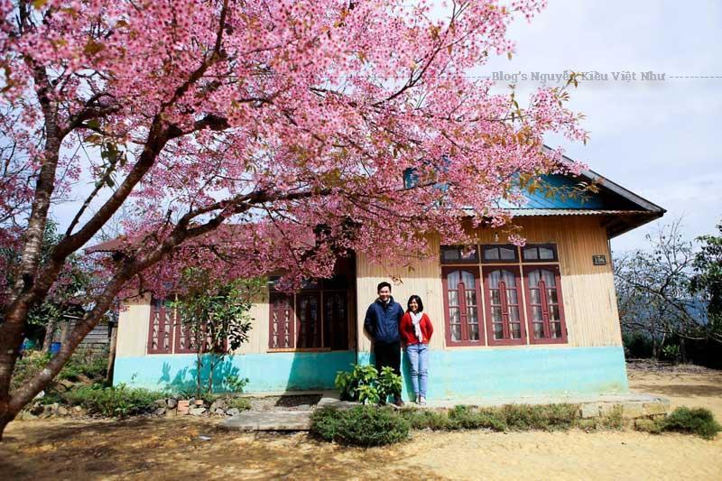 Du lịch Đà Lạt luôn là điểm du lịch thu hút nhiều du khách bởi phong cảnh, khí hậu và con người nơi đây.