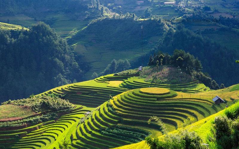 Những cung đường đèo quanh co giữa những cánh rừng già còn mang đậm nét nguyên sơ và những triền ruộng bậc thang của các dân tộc H'Mông, Thái.