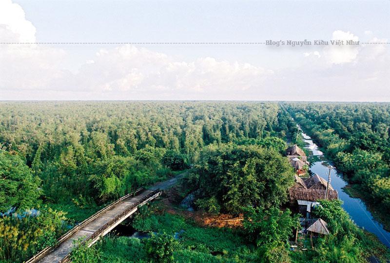 Cách thành phố Cà Mau 40km, Rừng quốc gia U Minh Hạ là một trong ba vùng lõi của Khu dự trữ sinh quyển Mũi Cà Mau.