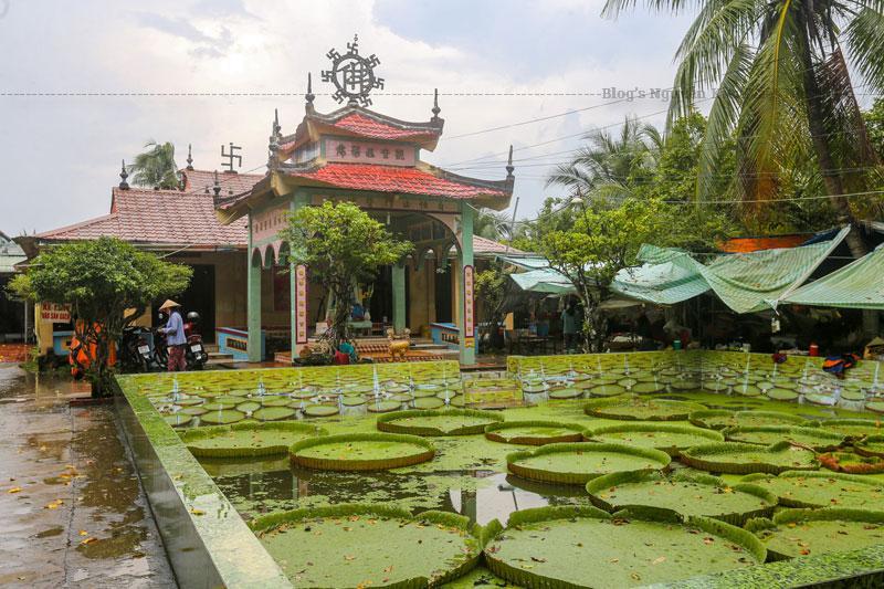 Sau năm 1975, chùa được xây lại với kiến trúc đơn giản không cầu kỳ bao gồm: cổng vào, tháp thờ Phật Quan Âm và chính điện.