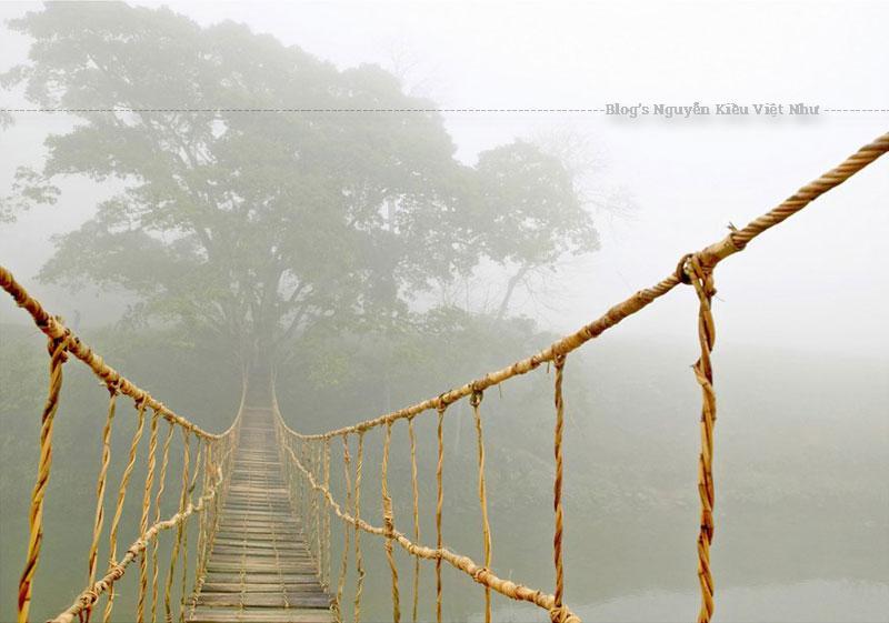 Du lịch Sapa ghé đến cầu Mây bạn mới thấy chúng có nhiều điều đáng được khám phá. Với kết cấu đơn giản, chiếc cầu chỉ được đan bằng những dây mây cùng các tấm ván đan xen trên cầu cách nhau chừng 20cm.