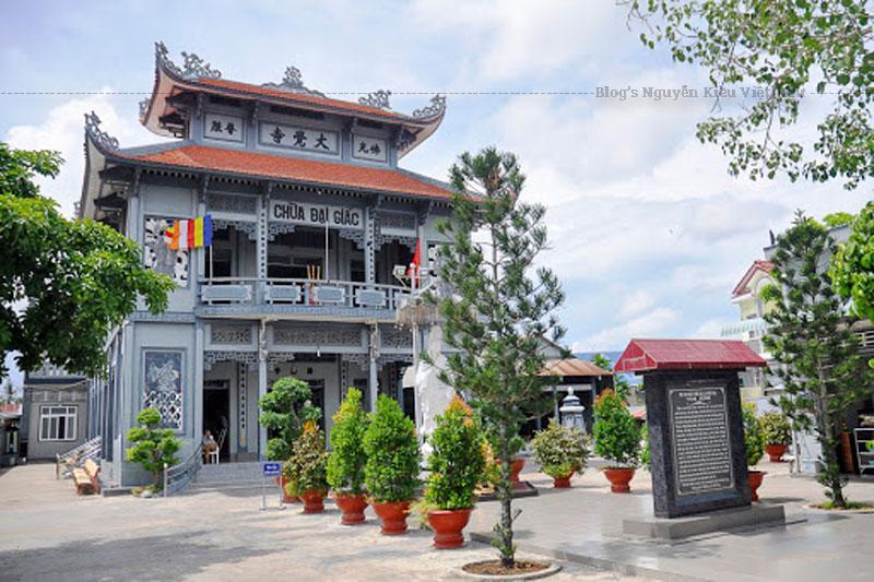 Chùa Đại Giác có diện tích khoảng 3.000 m2 với hai cổng xây bằng gạch ra vào, xung quanh có tường rào bao bọc. Sau nhiều lần trùng tu, hiện nay chùa cất theo lối chữ tam (三) với ba dãy nhà ngang nối liền nhau.