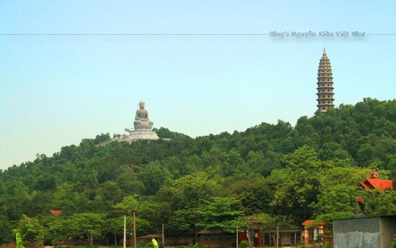 Cho tới nay, chùa Phật Tích có 7 gian tiền đường để dùng vào việc đón tiếp khách, 5 gian bảo thờ Phật, đức A di đà cùng các vị Tam thế Phật, 8 gian nhà tổ và 7 gian nhà thờ thánh Mẫu.