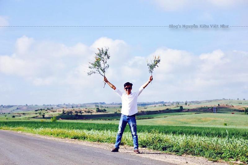 Vùng ngoại ô Italia =))
