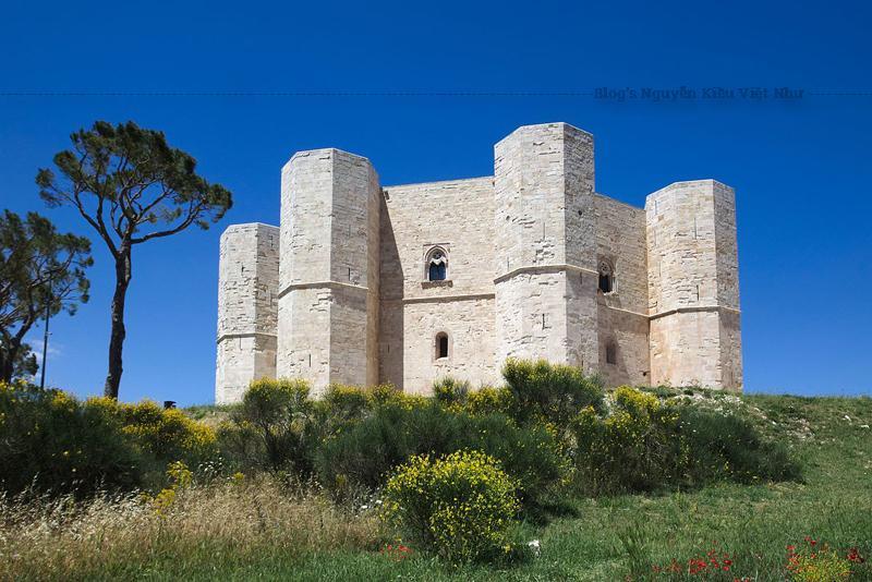 Lâu đài này do hoàng đế Frederick II của Đế quốc La Mã thần thánh cho xây dựng khoảng giữa các năm 1240 và 1250, trên 1 ngọn đồi nhỏ ở độ cao 540 m, gần tu viện Santa Maria del Monte, trực thuộc thị xã Andria.