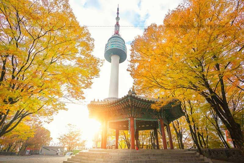 Tháp Namsan là điểm dừng chân không bao giờ thiếu trong các tour du lịch Hàn Quốc.